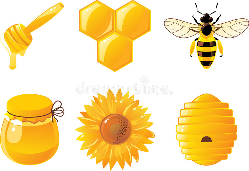 6 pszczoły miodowy ikon wektor royalty ilustracja