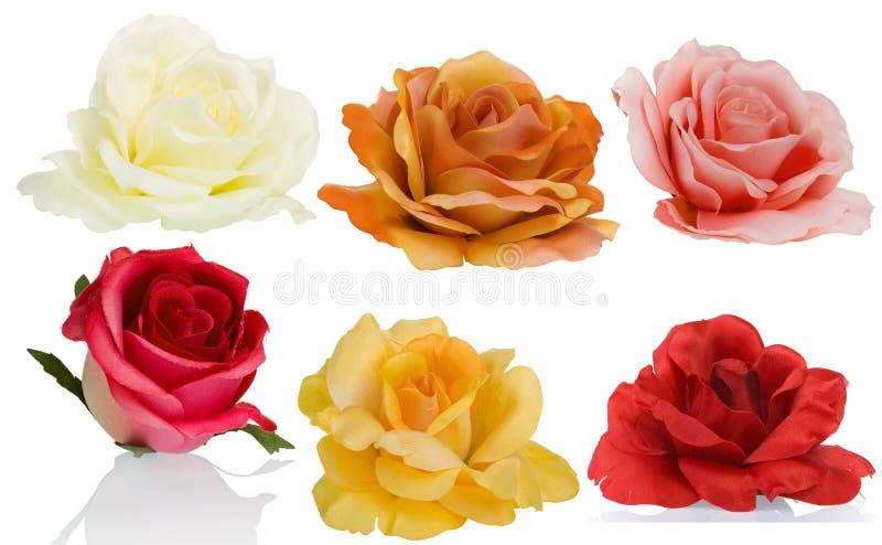 6 roses vues de de côté illustration de vecteur