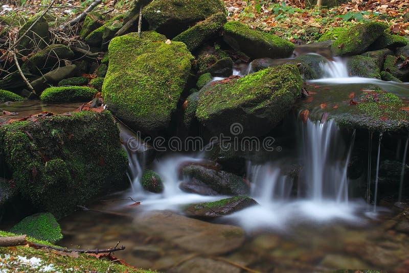 6 wody obraz stock
