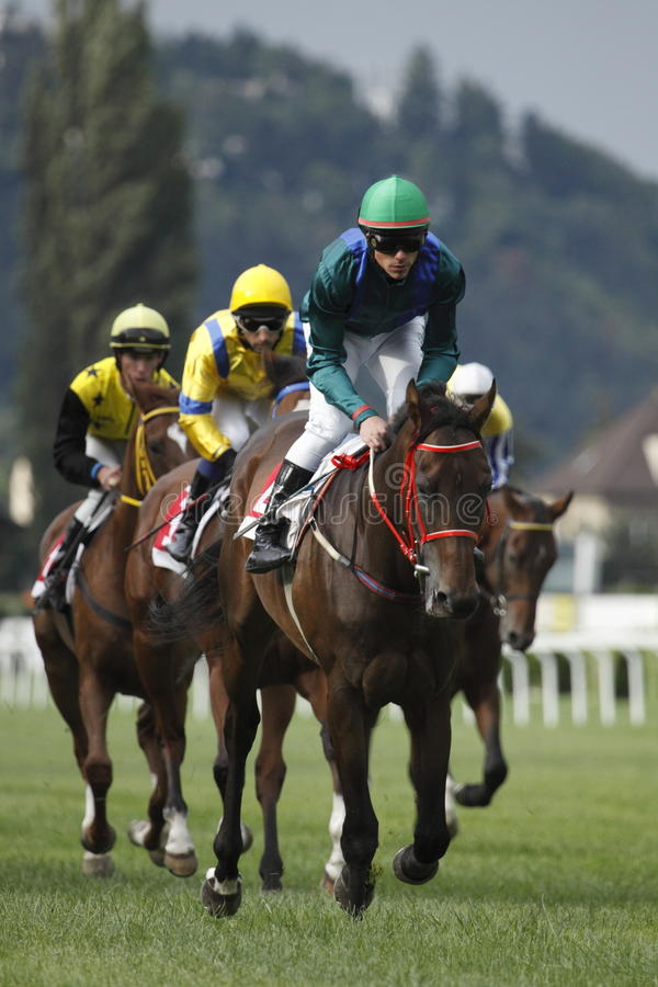 65. St Leger - corsa di cavalli di Tattersalls a Praga fotografia stock