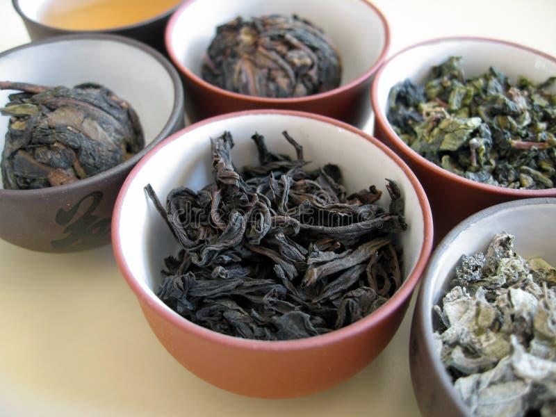 7中国人茶 库存照片