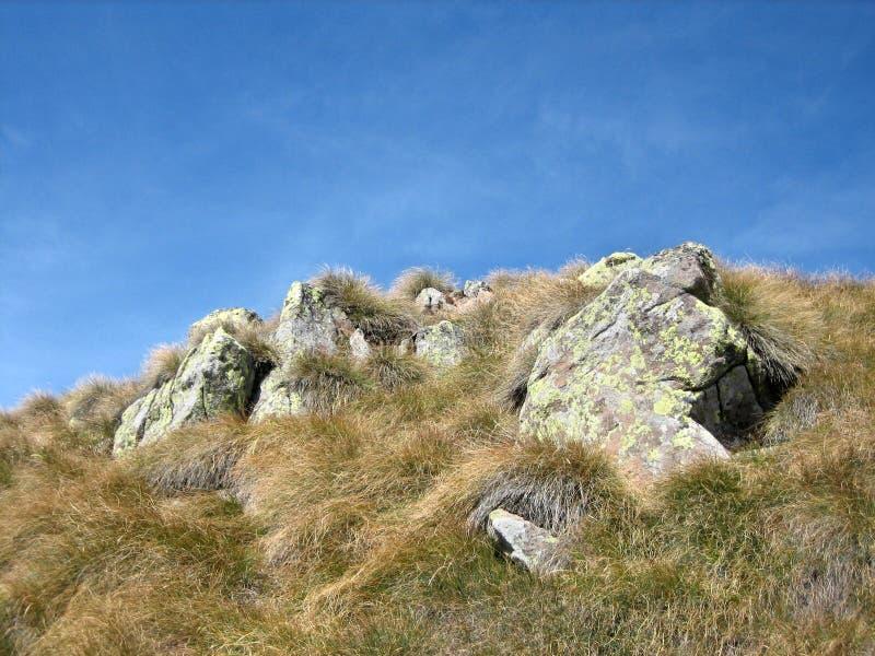 7山坡 库存图片