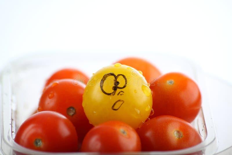 7 ντομάτες κερασιών στοκ φωτογραφία με δικαίωμα ελεύθερης χρήσης