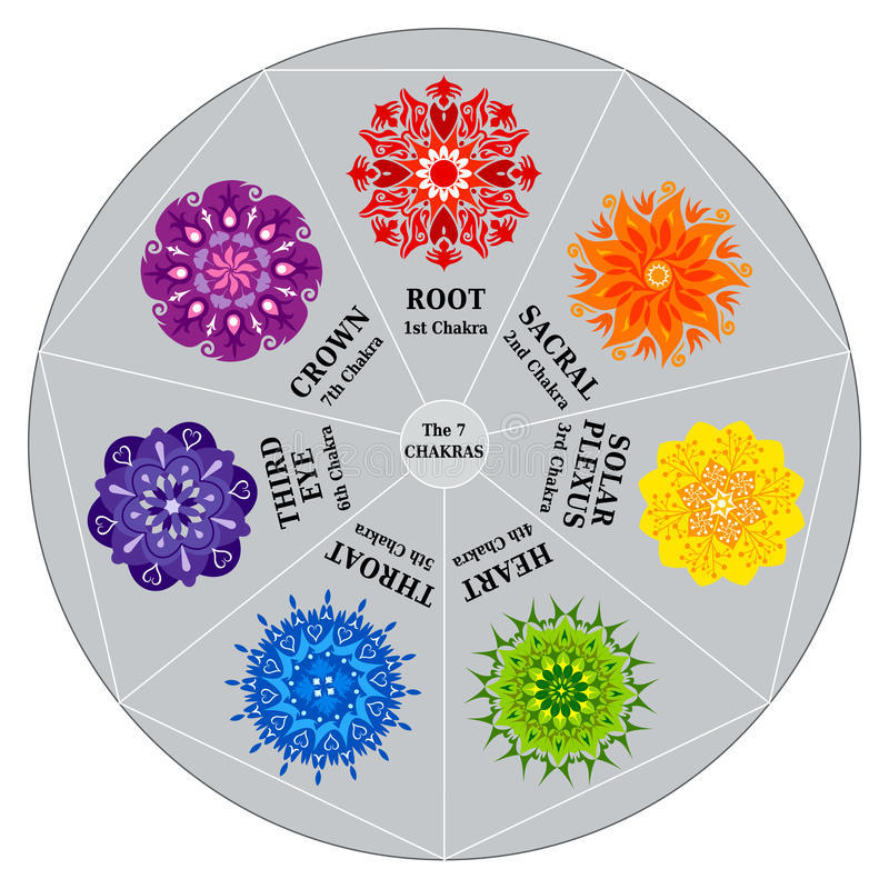 7 Chakras Color Chart with Mandalas. In an Heptagon / Circle. Can be used to balance the Centers with a Pendulum vector illustration