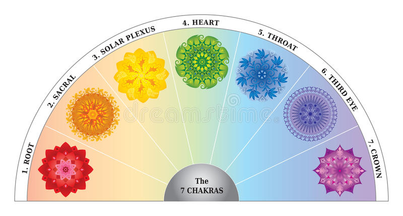 7 Chakras Color Chart / Semicircle with Mandalas. 7 Chakras Color Chart /Semicircle with Mandalas. Can be used to balance the Centers with a Pendulum stock illustration