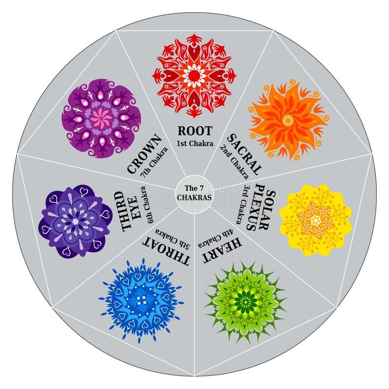 7 Chakras Farben-Diagramm mit Mandalen vektor abbildung