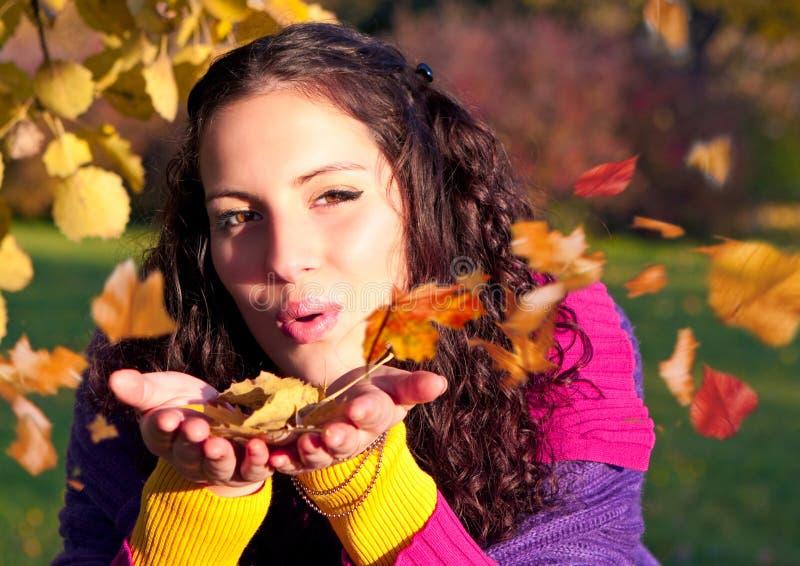 7 jesień kolorowa fotografia stock