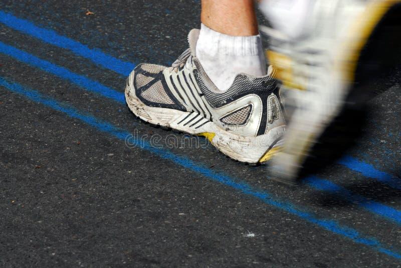 7 maratonlöpare royaltyfri bild