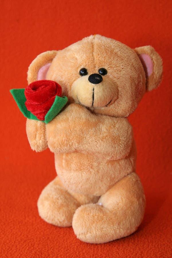 7 teddy bear zdjęcie stock