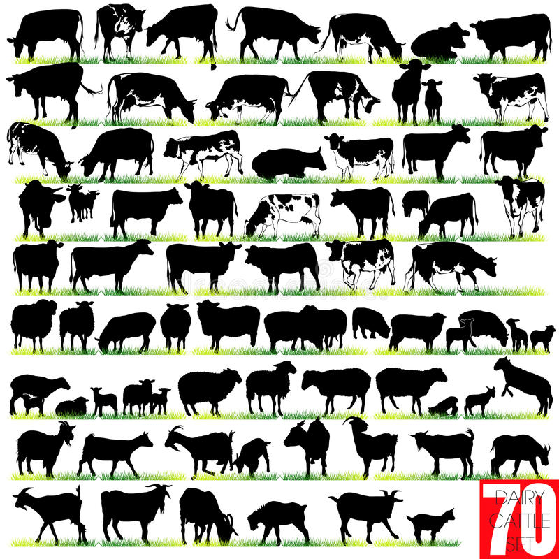 70 Dairy Cattle Silhouettes Set