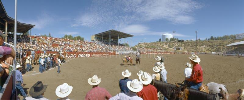 75th Ellensburg Rodeo. Labor Day, Ellensburg, Washington stock photo