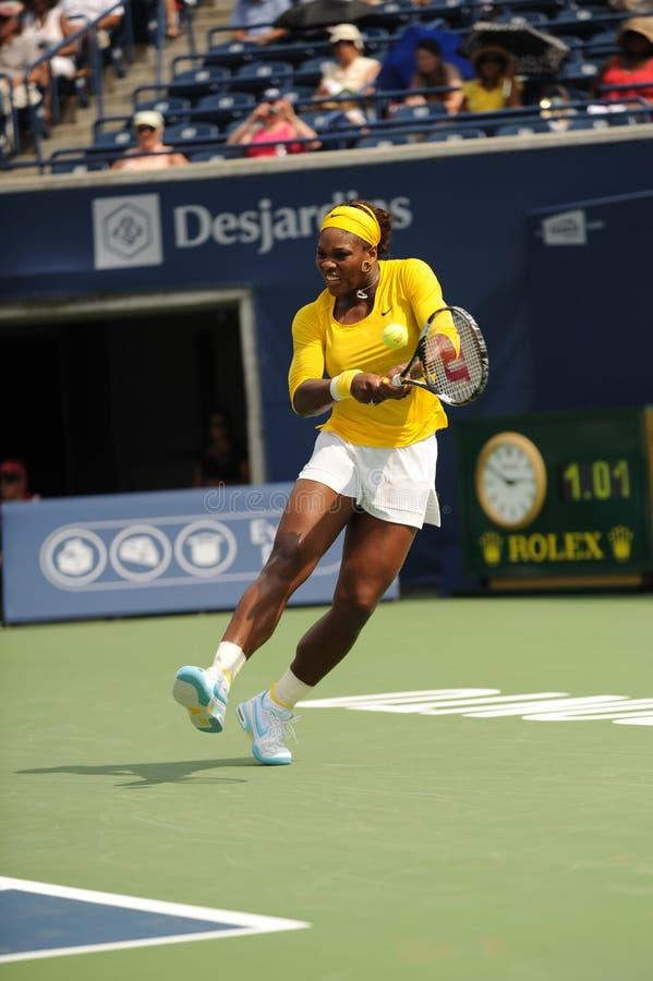 77 2009 filiżanek Rogers Serena Williams obraz stock