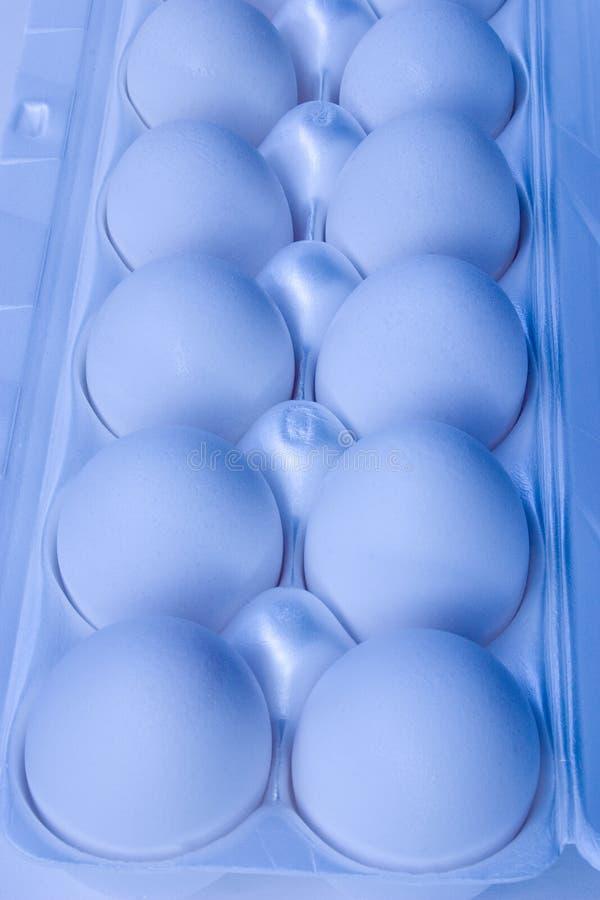 8个鸡蛋 库存图片