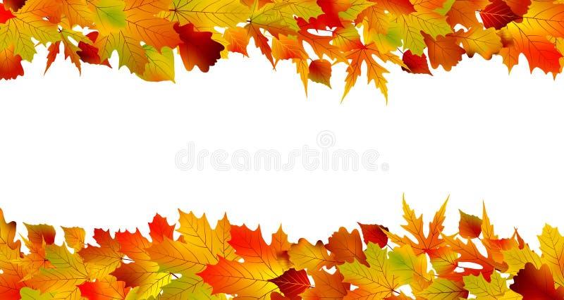 8片秋天边界五颜六色的eps叶子做