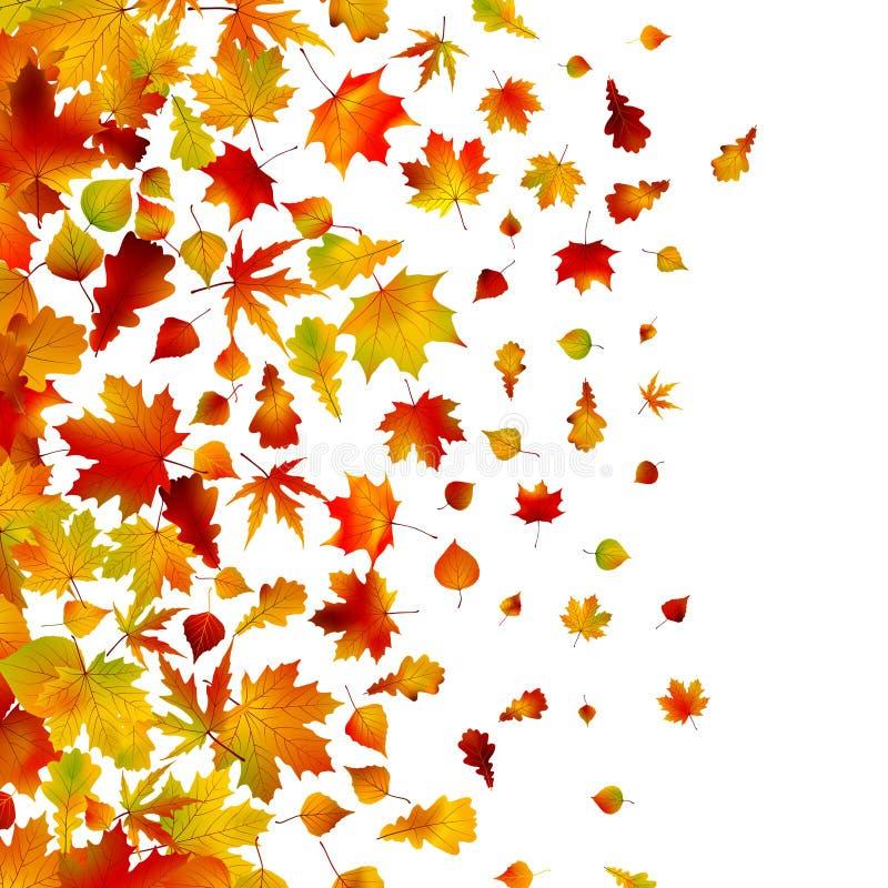 8 jesień tła eps liść ilustracji