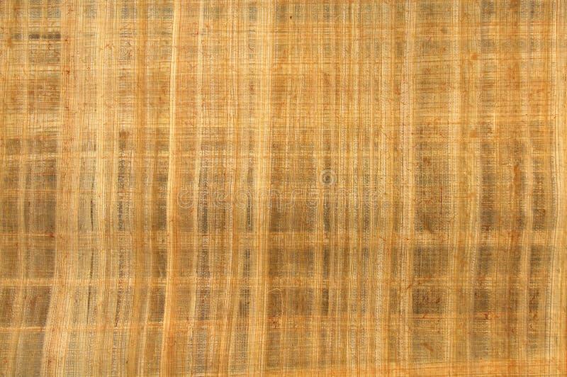8 papieru wzorzystego drewna obraz royalty free