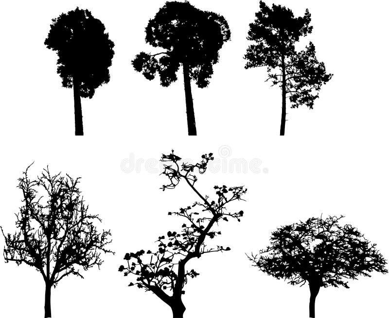 8 wyznaczone drzew odizolowanych royalty ilustracja