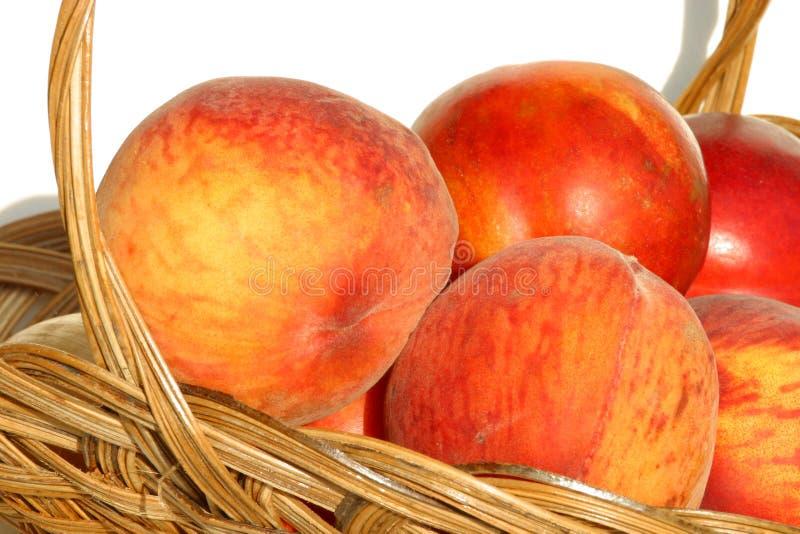 9183 nya persikor för korglantgård arkivfoton