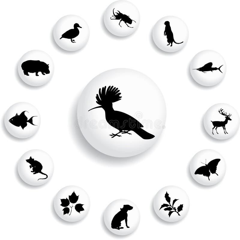 98 b guzików natury set ilustracji