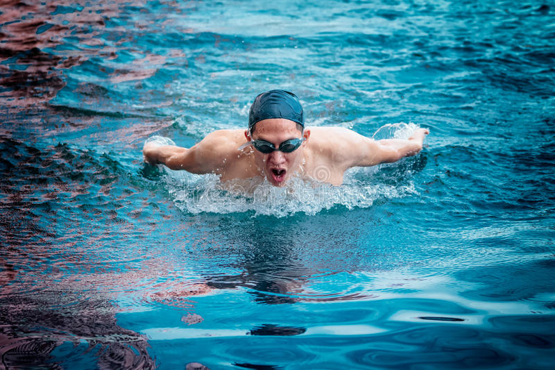 Ação da natação do curso de borboleta foto de stock royalty free