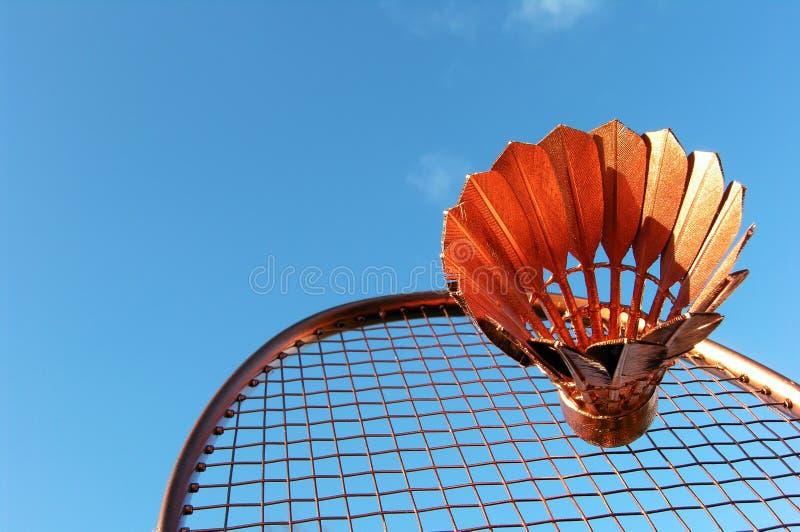 Ação do Badminton fotos de stock royalty free