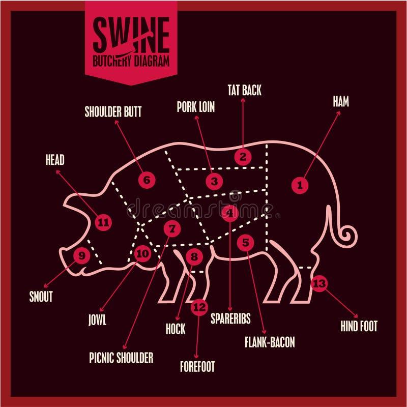 Açougue, cortes de carne de porco clássicos Diagrama do açougue dos suínos Carne de carne de porco ilustração do vetor