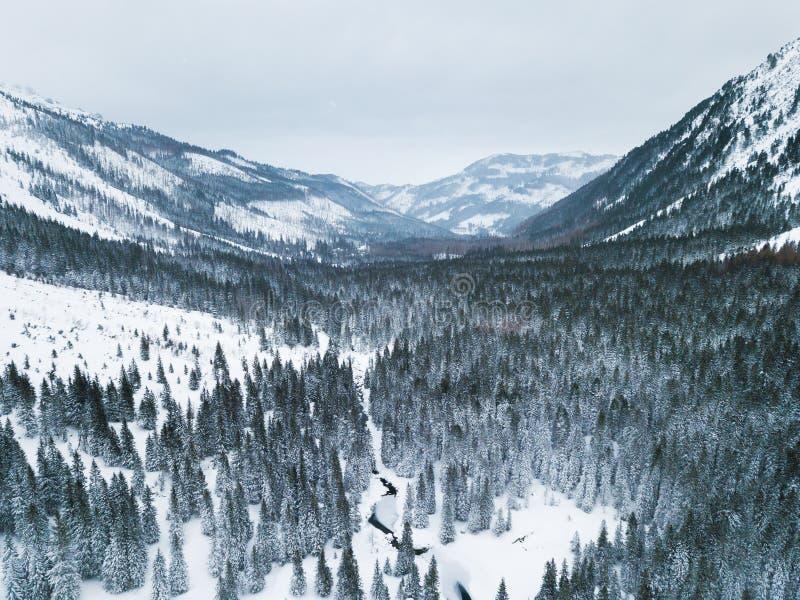 Aéreo: Paisaje del invierno en montañas imagen de archivo libre de regalías