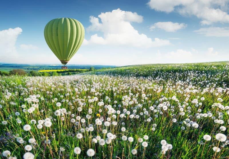 Aérez le ballon au-dessus du champ avec des fleurs à l'heure d'été image libre de droits