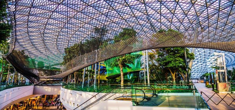Aéroport Singapour - parc de Changi de bijou d'auvent photo stock