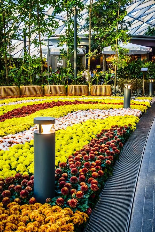 Aéroport Singapour - parc de Changi de bijou d'auvent image stock
