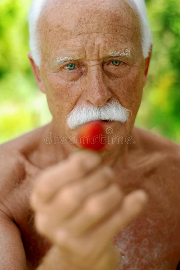 Aîné avec une fraise images libres de droits