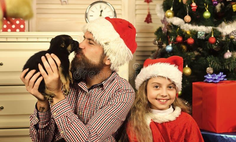 Año Nuevo del perro, niño de la feliz Navidad, padre con el perrito imagen de archivo libre de regalías