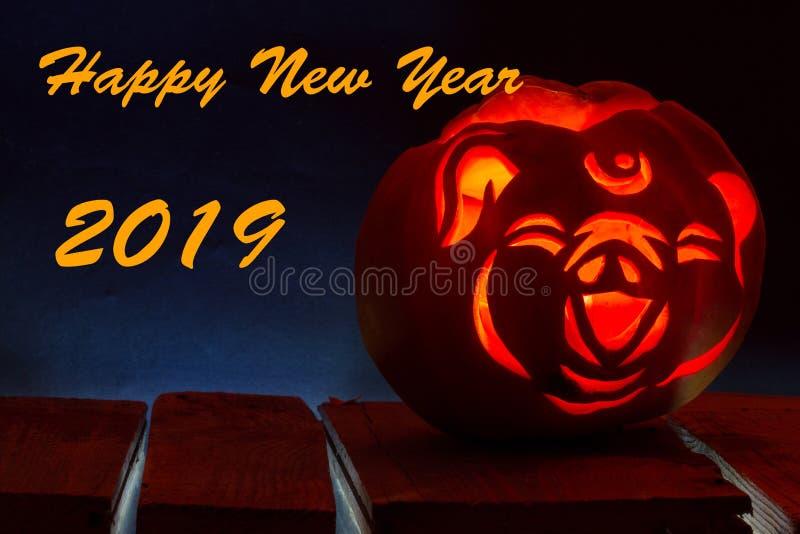 2019 Años Nuevos chinos del cerdo La lámpara de Jack, estilizada bajo cabeza de un cerdo fotos de archivo