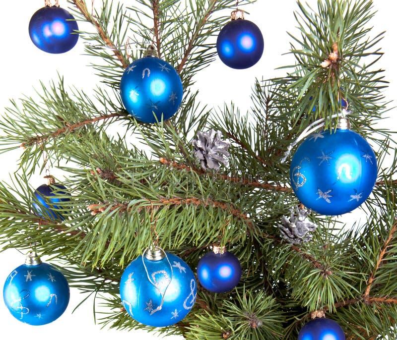 Años Nuevos de bolas en ramas de un árbol de navidad. foto de archivo libre de regalías