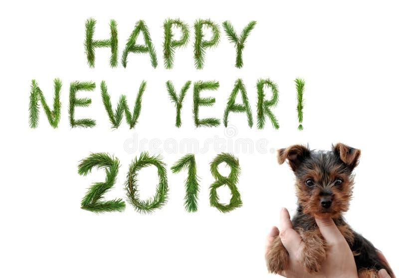 2018 Años Nuevos Dos mil dieciocho Saludos de la Feliz Año Nuevo Pequeño perrito lindo en manos femeninas Las palabras se hacen d foto de archivo libre de regalías
