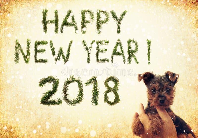2018 Años Nuevos Dos mil dieciocho Saludos de la Feliz Año Nuevo snowing Pequeño perrito lindo en manos femeninas Las palabras se imagenes de archivo