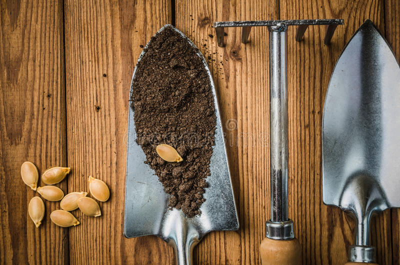 Aún-vida con las semillas y el utensilio de jardinería, visión superior foto de archivo