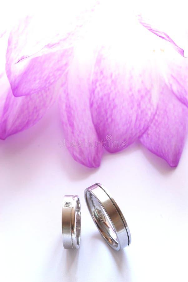 Aún-vida de la boda imagen de archivo libre de regalías