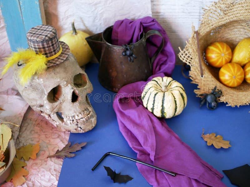 Aún vida decorativa estacional de las calabazas, cráneo, jarro, paño púrpura, araña negra del plasticine foto de archivo libre de regalías