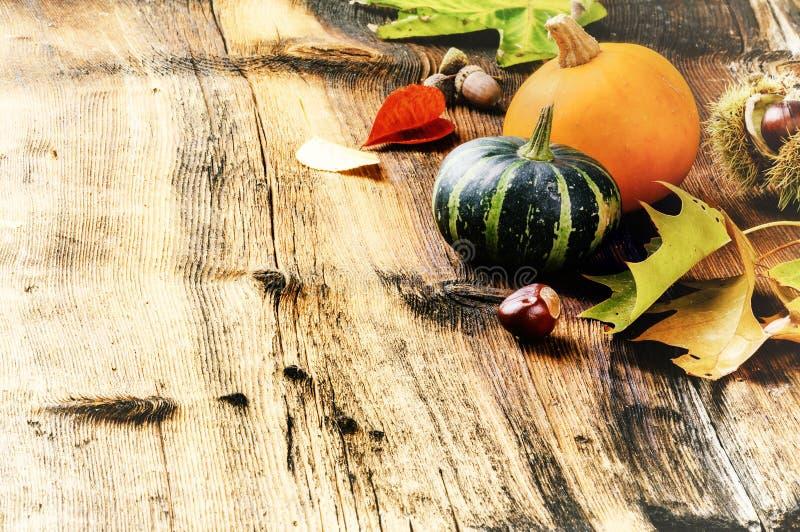 Aún-vida del otoño con las calabazas y las hojas del roble imagen de archivo
