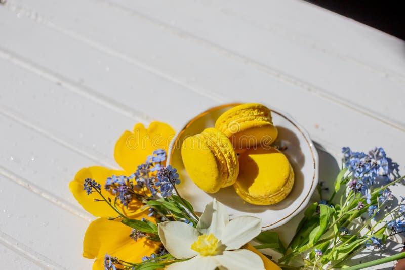 Aún vida hermosa con las galletas y las flores del macaron postre del limón aislado Copie el espacio desierto francés del chocola imagen de archivo libre de regalías