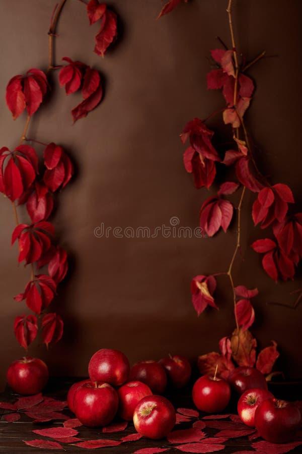 Aún-vida monocromática del otoño en rojo y las sombras de Borgoña imagenes de archivo