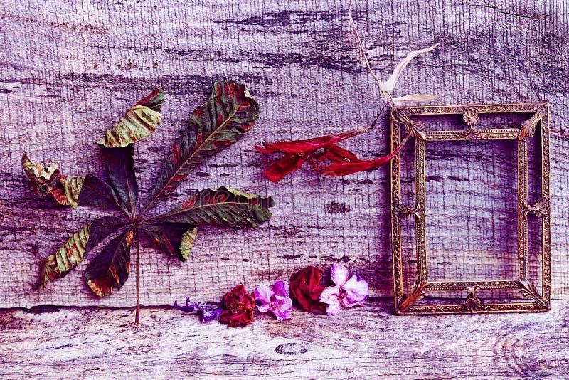 Aún vida púrpura y roja con las flores y un marco en fondo de madera foto de archivo libre de regalías