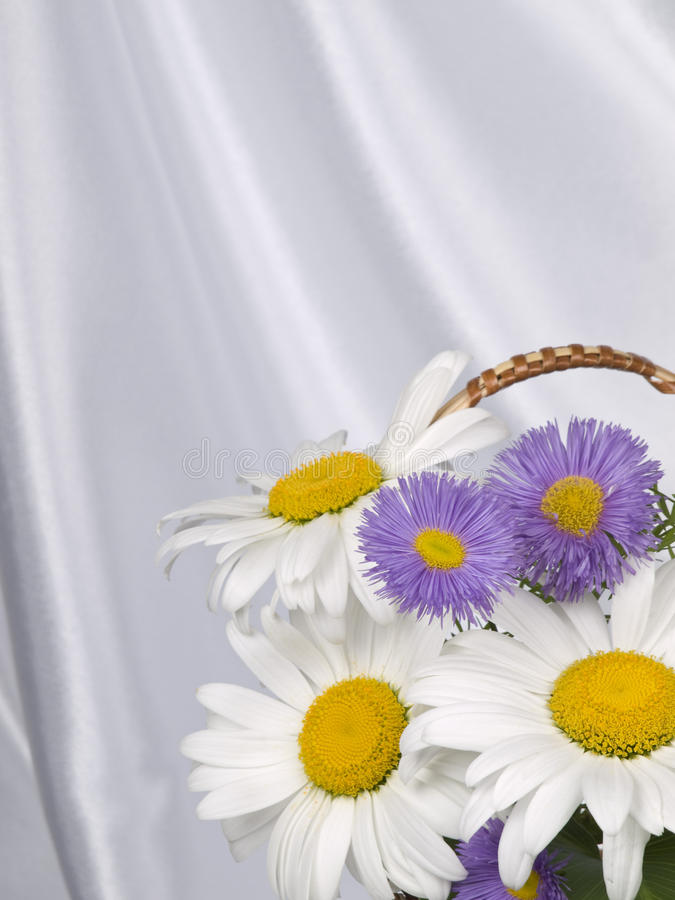 Free A Few Flowers Stock Photography - 14917952