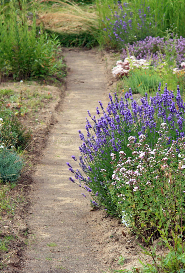 Free A Garden Path Royalty Free Stock Image - 15499876