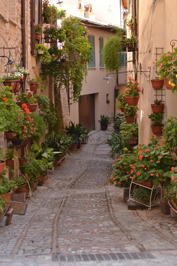 Free A Glimpse Of Spello In Umbria - Italy Stock Image - 161653651