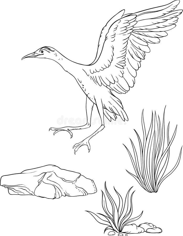 Free A Landing Bird, A Grass And A Stone. Stock Photo - 99840350