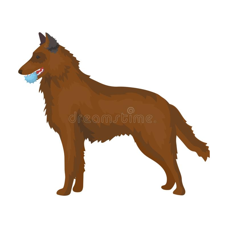 Free A Pet, A Dog With A Ball In His Teeth, A German Shepherd. Stock Image - 100685571