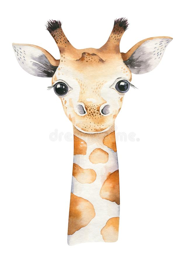 Free A Poster With A Baby Giraffe. Watercolor Cartoon Giraffetropical Animal Illustration. Jungle Exotic Summer Print. Royalty Free Stock Photography - 152979547