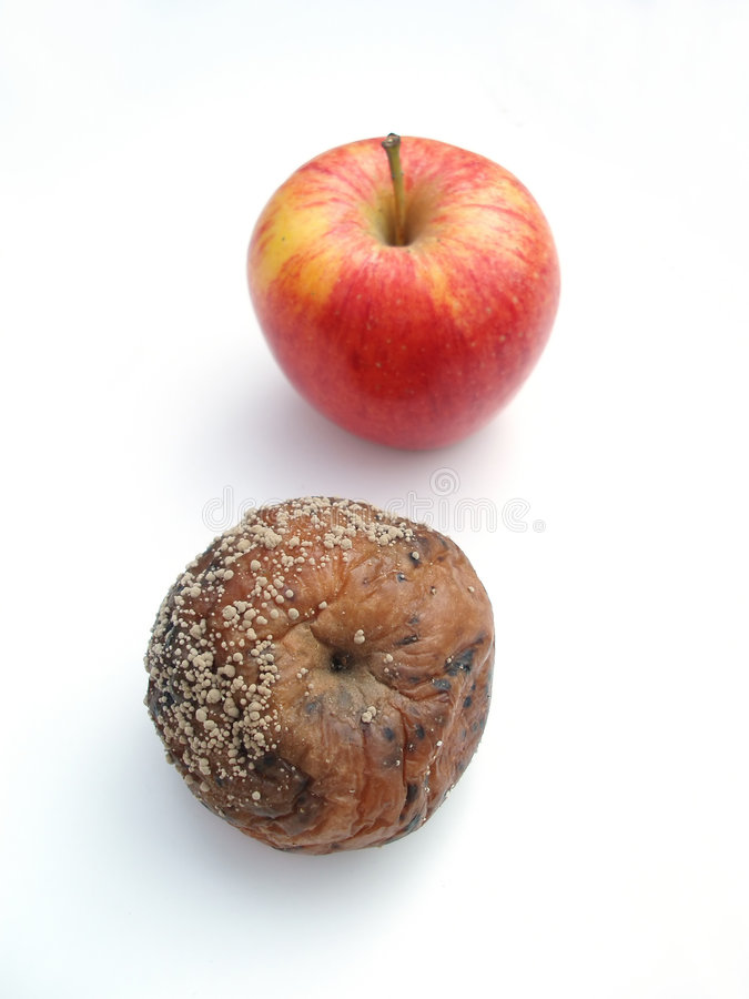 Free A Rotten And A Fresh Apple Stock Photography - 265782